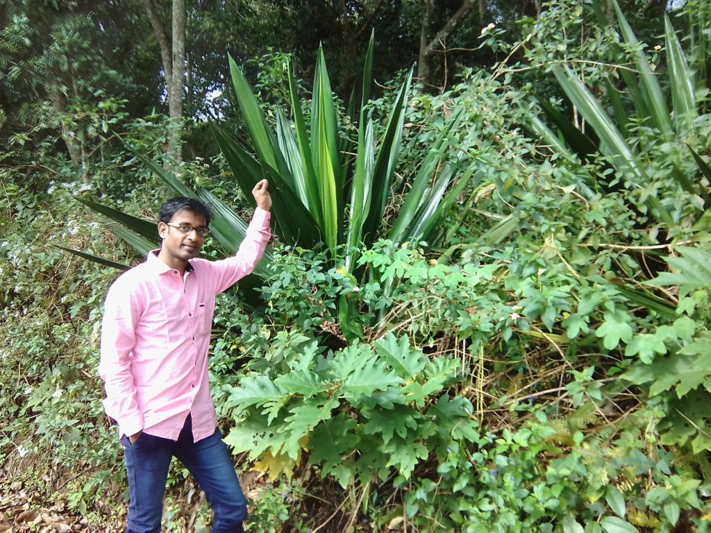 What I have been doing in Yercaud and What I'm going to do today_MC Thamizharasan