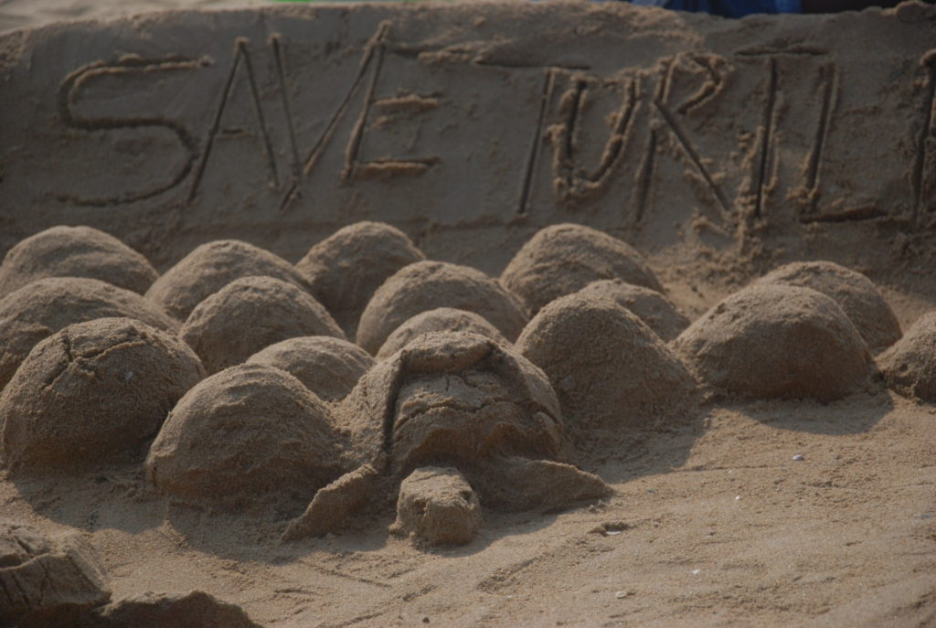 Dslr Photos of Save the Turtle Sand Sculpting Contest 2018 at Palavakkam Beach ECR Chennai